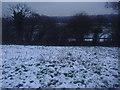 TQ2492 : Fields in Woodside Park by David Howard