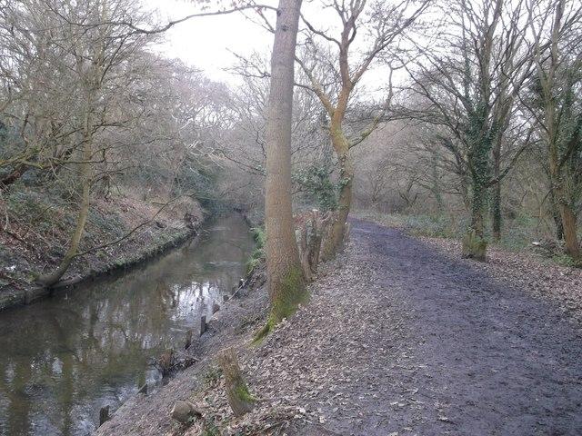 Path beside Beverley Brook, Wimbledon Common
