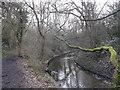 TQ2171 : Path beside Beverley Brook on Mill Corner, Wimbledon Common by David Anstiss