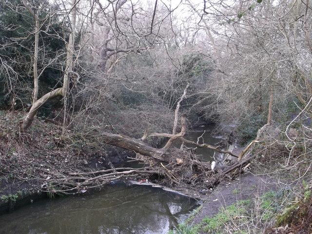 Blockage on Beverley Brook, Wimbledon Common