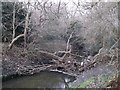 TQ2170 : Blockage on Beverley Brook, Wimbledon Common by David Anstiss