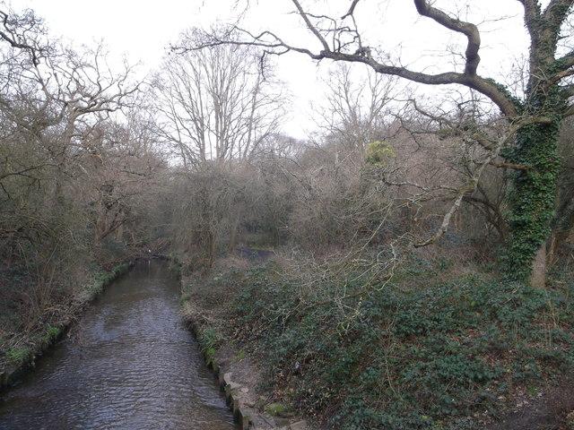 Beverley Brook, Wimbledon Common