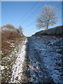 TL5657 : Byway and power line by John Sutton