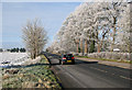 TL5056 : A frosty morning on Cambridge Road by John Sutton