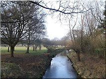 TQ2172 : The Beverley Brook, Richmond Park by David Anstiss