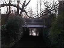 TQ2172 : Roehampton Vale A3 road bridge over the Beverley Brook by David Anstiss