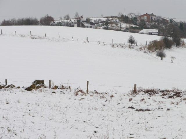 Snowy field west of Foxroyd Shrogg