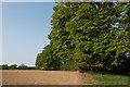 TQ3347 : Field edge by Ian Capper