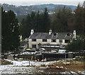 SD4292 : Greenbank Farm and sheep near Crosthwaite by Karl and Ali