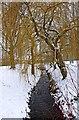 SO8377 : Blake Brook in Springfield Park, Kidderminster by P L Chadwick