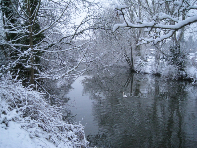 River Avon after the snow of 20-01-2013 (2)