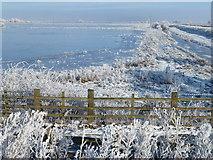TL5392 : Frozen washland - The Ouse Washes near Welney by Richard Humphrey