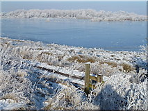 TL5392 : White hoar frost and blue ice - The Ouse Washes near Welney by Richard Humphrey