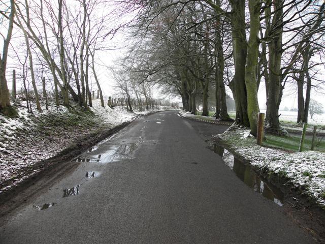 Bracky Road