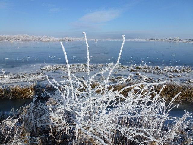 Winter washland - The Ouse Washes near Welney