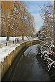 TQ2992 : Pymme's Brook, Arnos Park, London N11 by Christine Matthews