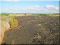 SK7357 : Hilltop dung heap south of Park Leys by Trevor Rickard