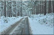 NH9817 : Minor road near Tulloch by Steven Brown