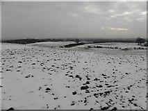 H5572 : Snow at Bracky by Kenneth  Allen
