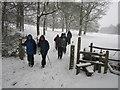 TQ6935 : Winter's Walk by Chris McAuley