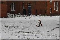 SU5985 : Snowman on the lawn by Bill Nicholls