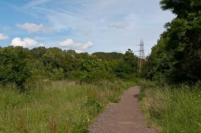 Weatherhill Common