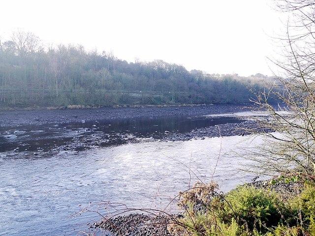 River Tyne south of Ryton Island
