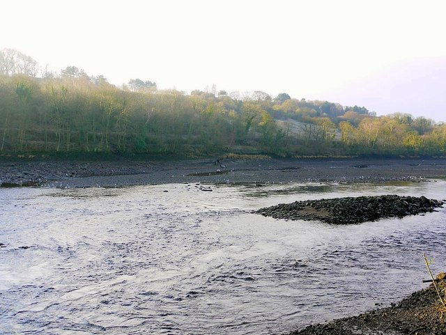 Shingle island in the River Tyne