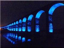 NT9953 : Border Bridge illuminated 5 by Barbara Carr