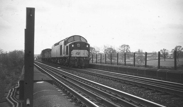 Train at Southburn Dene viaduct, 1968