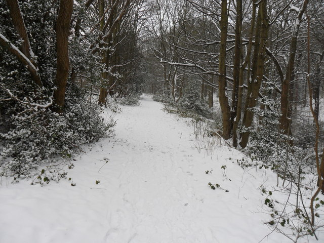 Snowy footpath, Penny Spring Wood, Almondbury
