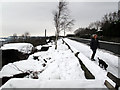 SE0823 : Dog walking on Albert Promenade by Stephen Craven