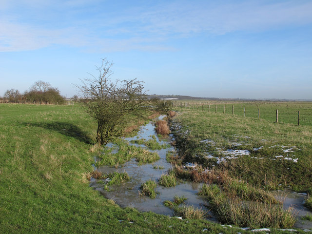 January Ditch