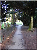 TL1314 : Path to St.Nicholas Church by Adrian Cable
