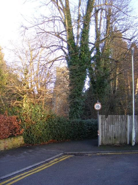 Path to St.Nicholas Church