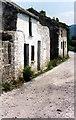 Q8113 : Windmill Lane Blennerville by Jo Turner