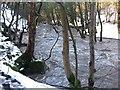 SK2998 : The River Don at Deepcar by Dave Pickersgill
