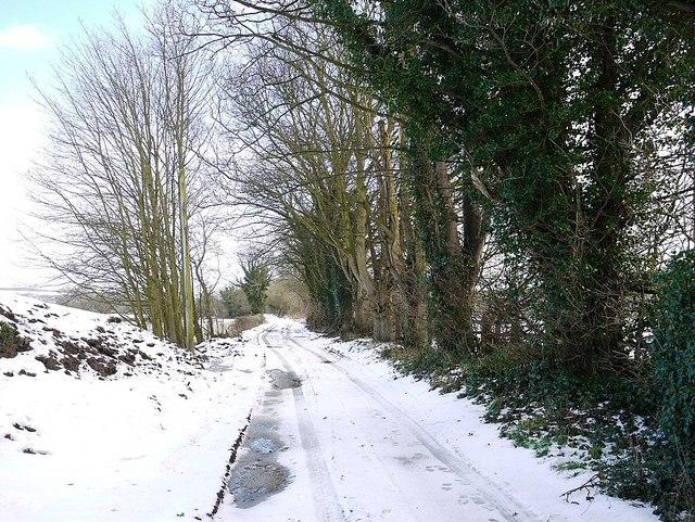 Track east of Heddon Haughs Farm