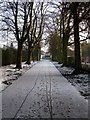SK4833 : Path into West Park by David Lally
