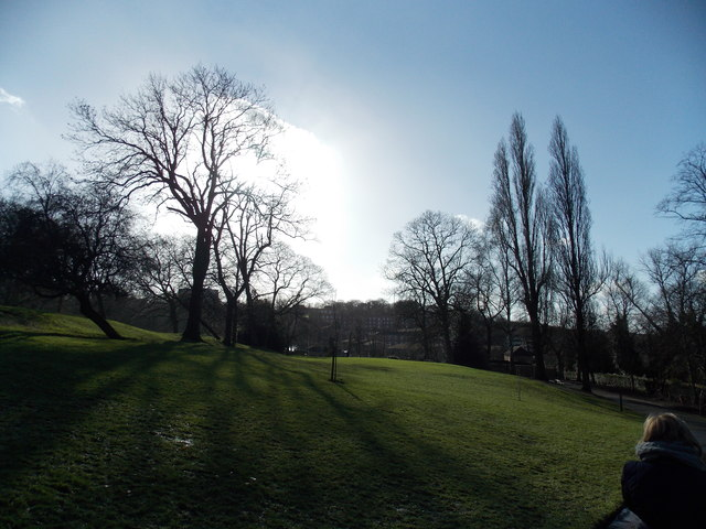 View of houses in Forest Hill from Horniman Gardens