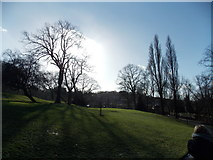 TQ3473 : View of houses in Forest Hill from Horniman Gardens by Robert Lamb