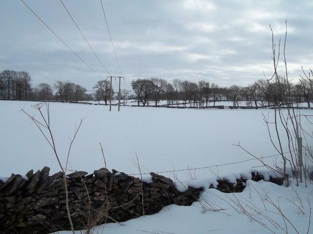 Snow Scene near Thorntree Farm