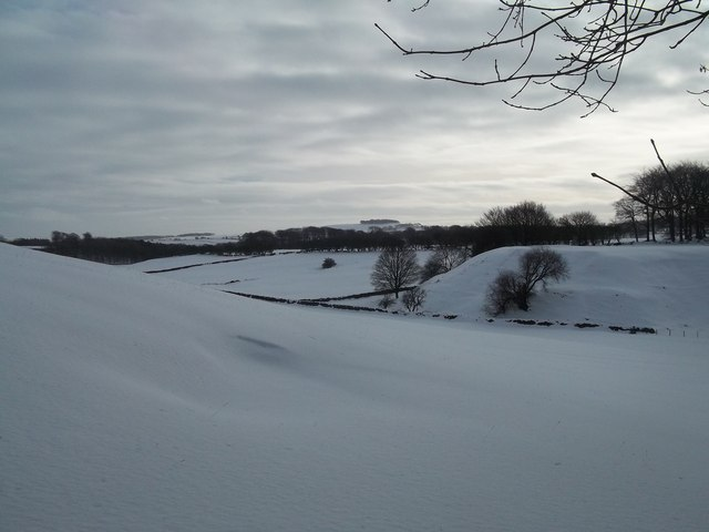 Snow Scene viewed from Green Lane