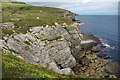 SY9876 : Cliffs at Seacombe Quarry, Isle of Purbeck by Phil Champion