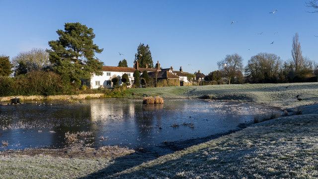 Bradmore Green pond, Old Coulsdon