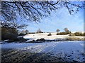 NZ0954 : View across to Panshields in the snow by Robert Graham