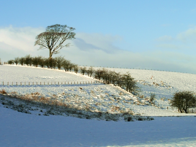 Winter near Lochmaben