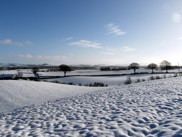 Snowy Annandale