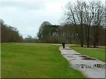 TQ1352 : A lonesome walk by Alexander P Kapp