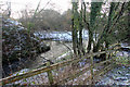 SJ8965 : Confluence of the Cow Brook and River Dane by Peter Turner